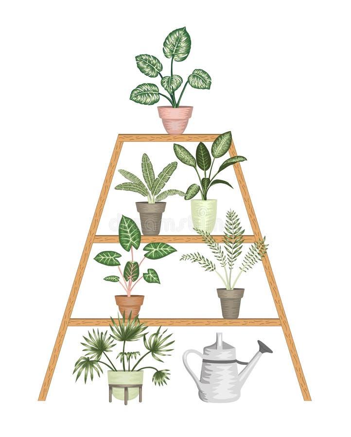Ilustra??o do vetor de houseplants tropicais em uns potenci?metros em um suporte isolado no fundo branco ilustração do vetor