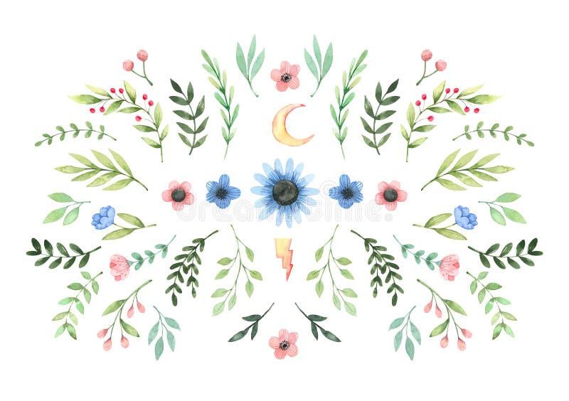 Ilustra??o tirada m?o da aguarela Composição com as folhas, branchws e as flores botânicos da mola greenery Fundo floral do proje ilustração royalty free