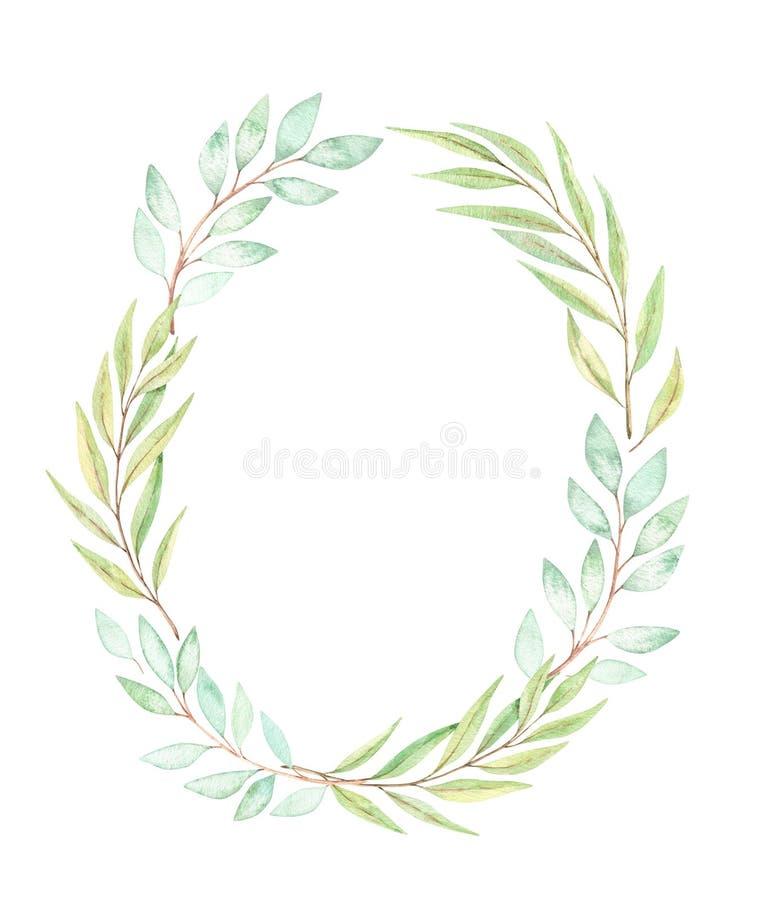 Ilustra??o tirada m?o da aguarela Grinalda bot?nica com eucalipto, ramos e folhas greenery Elementos florais do projeto da mola ilustração royalty free