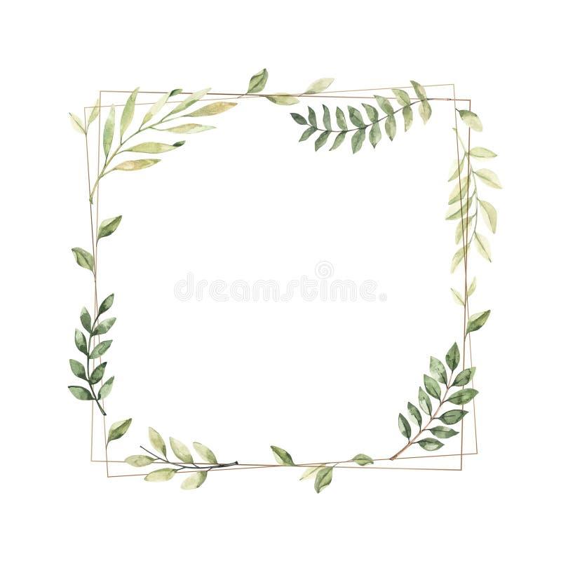 Ilustra??o tirada m?o da aguarela Quadro geométrico do ouro com ramos e as folhas botânicos greenery Elementos do projeto gr?fico ilustração stock