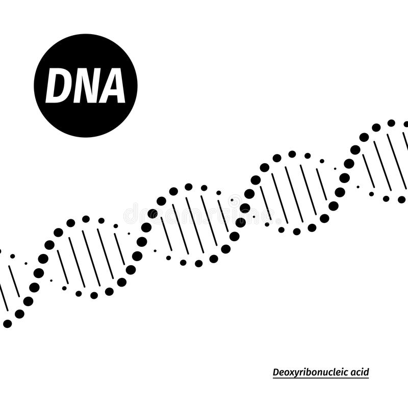 Ilustración de la DNA del vector libre illustration