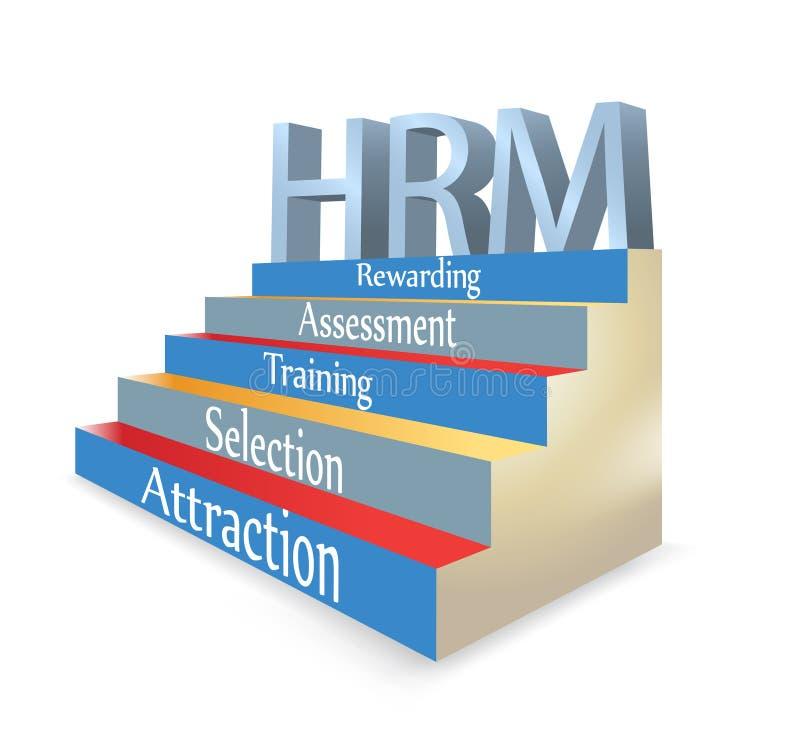 Ilustración de la gerencia de recurso humano de HRM ilustración del vector