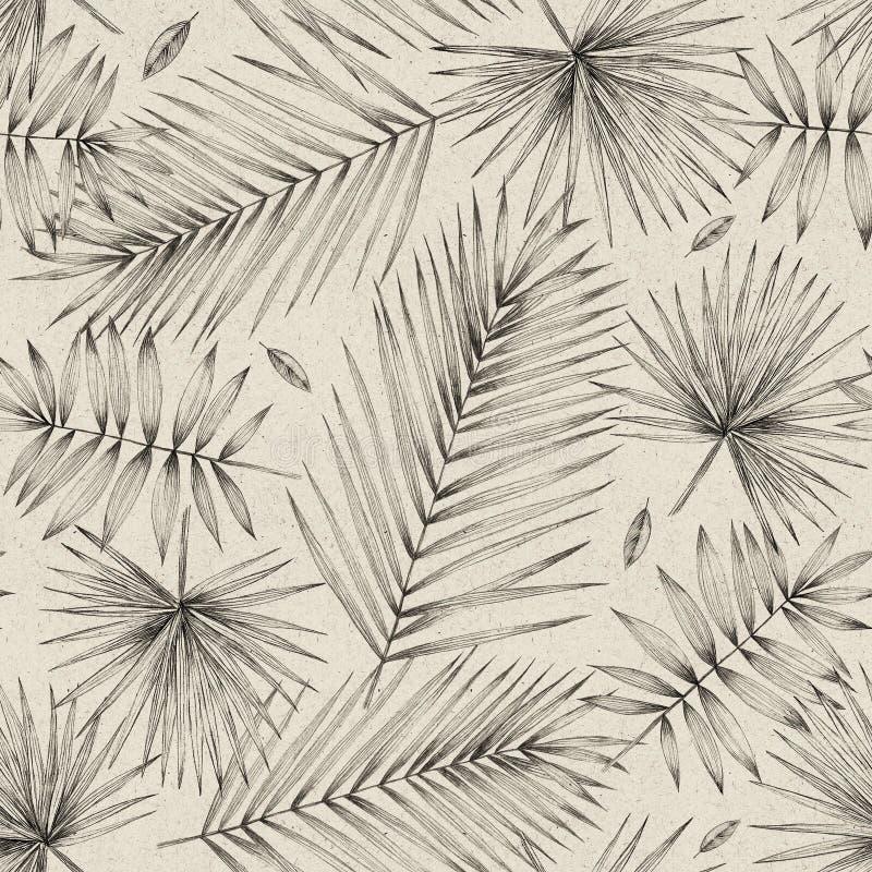 Ilustración de la vendimia Modelo inconsútil con las hojas de palma Dibujo de lápiz simple Gráficos manuales Diseño para empaquet stock de ilustración