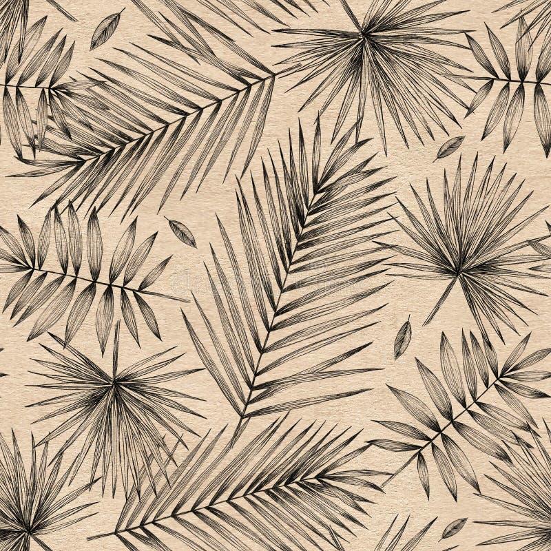 Ilustración de la vendimia Modelo inconsútil con las hojas de palma en fondo del papel Dibujo de lápiz simple Gráficos manuales D stock de ilustración