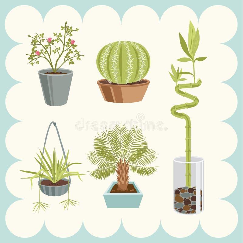 Ilustración de las plantas caseras ilustración del vector
