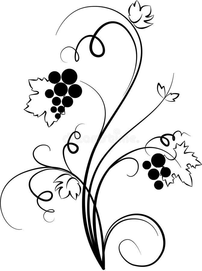 Ilustración decorativa de la uva (bosquejo) ilustración del vector