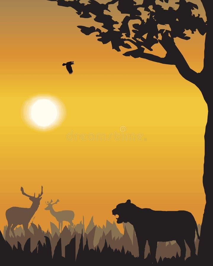 Ilustración del paisaje de la tarde del vector ilustración del vector