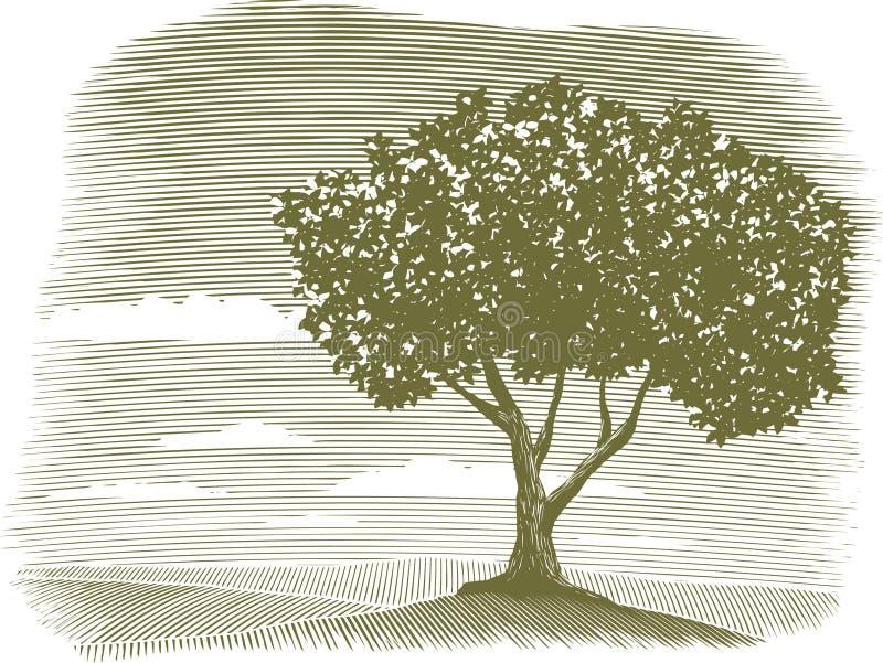Ilustración del paisaje del árbol del grabar en madera ilustración del vector