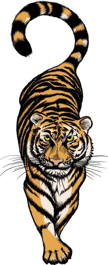 Ilustración del tigre que se agacha stock de ilustración
