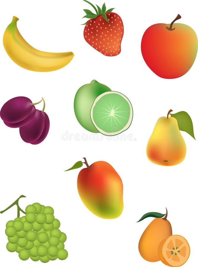 Ilustración del vector de frutas libre illustration