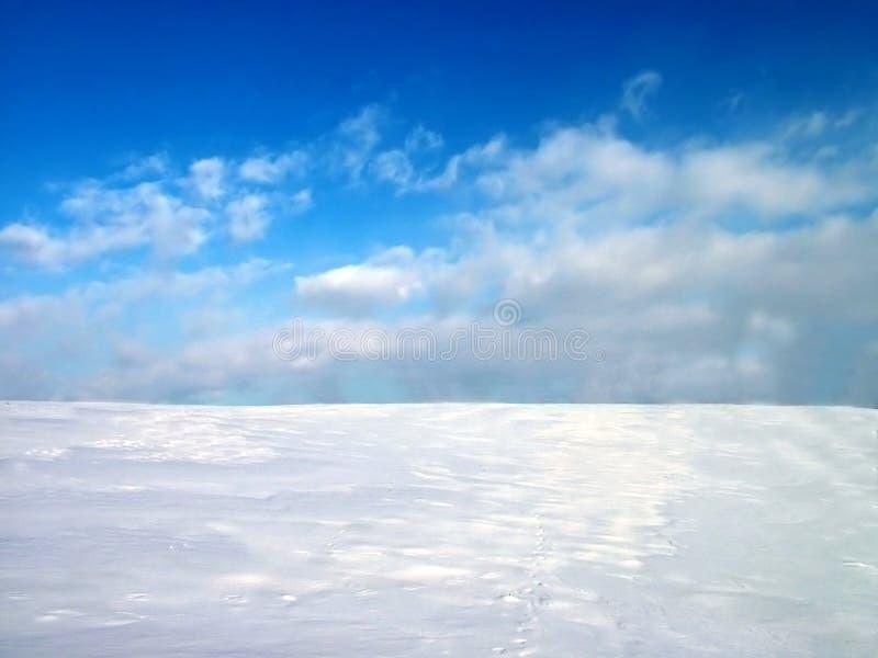 Ilustración hivernal 1 ilustración del vector