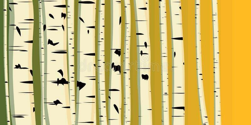 Ilustración horizontal de los abedules de los troncos. ilustración del vector