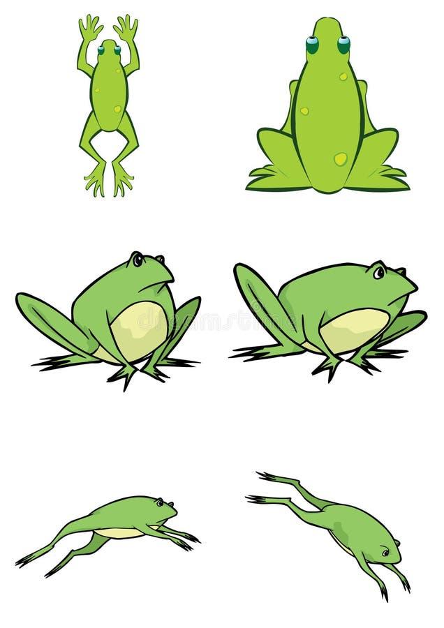 Ilustración linda clasificada de la rana en vector stock de ilustración