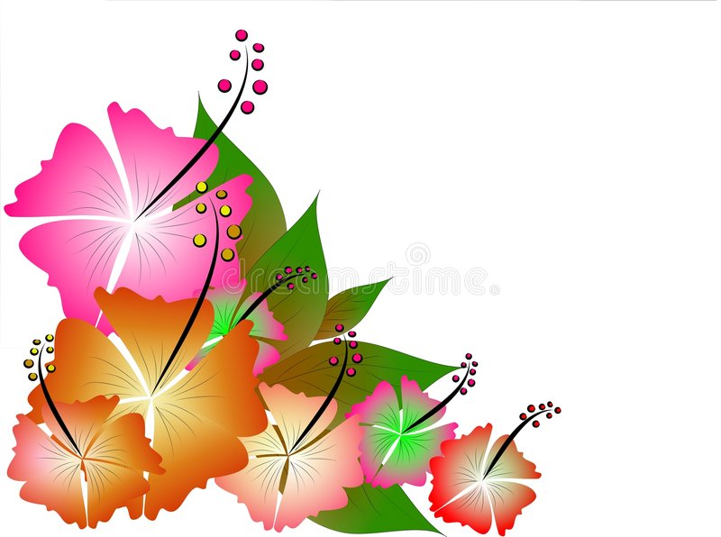 Ilustración tropical stock de ilustración