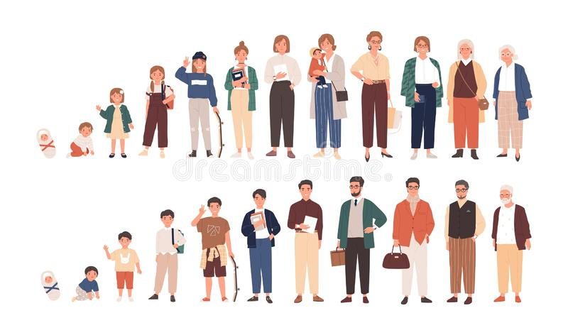 Ilustración vectorial de los ciclos de vida humanos Crecimiento y envejecimiento de hombres y mujeres Caricatura de hombres y muj stock de ilustración
