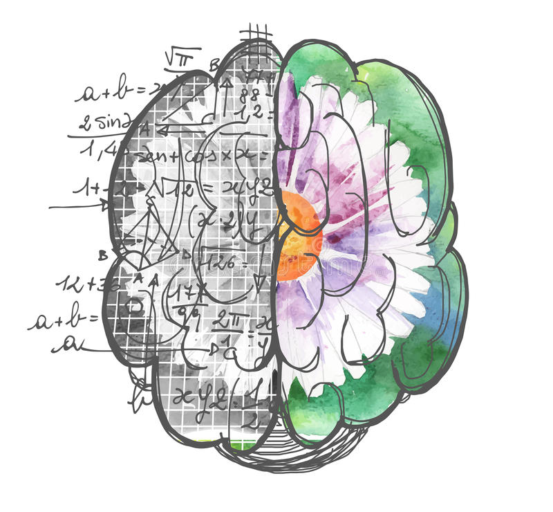 Ilustraciones de las aplicaciones de los hemisferios del cerebro stock de ilustración
