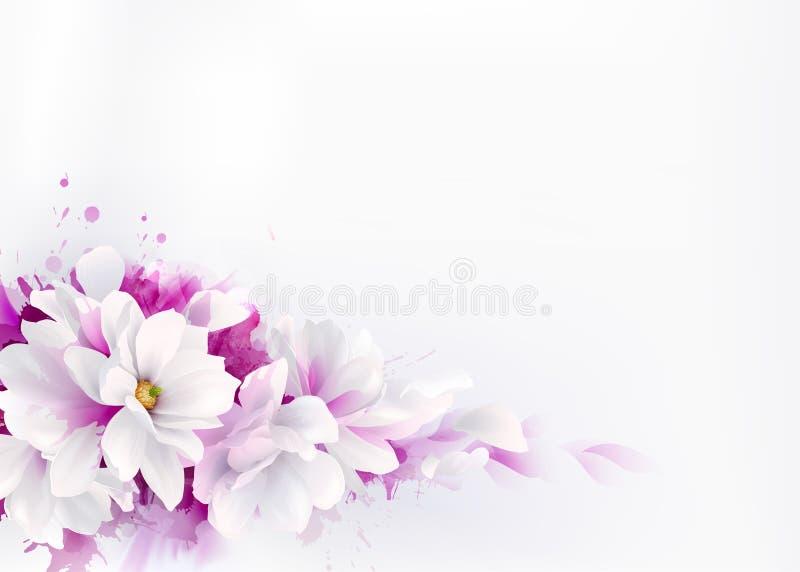 Ilustracja białe piękne magnolie, Skacze eleganccy kwiaty przedstawiający na akwareli tle ilustracji