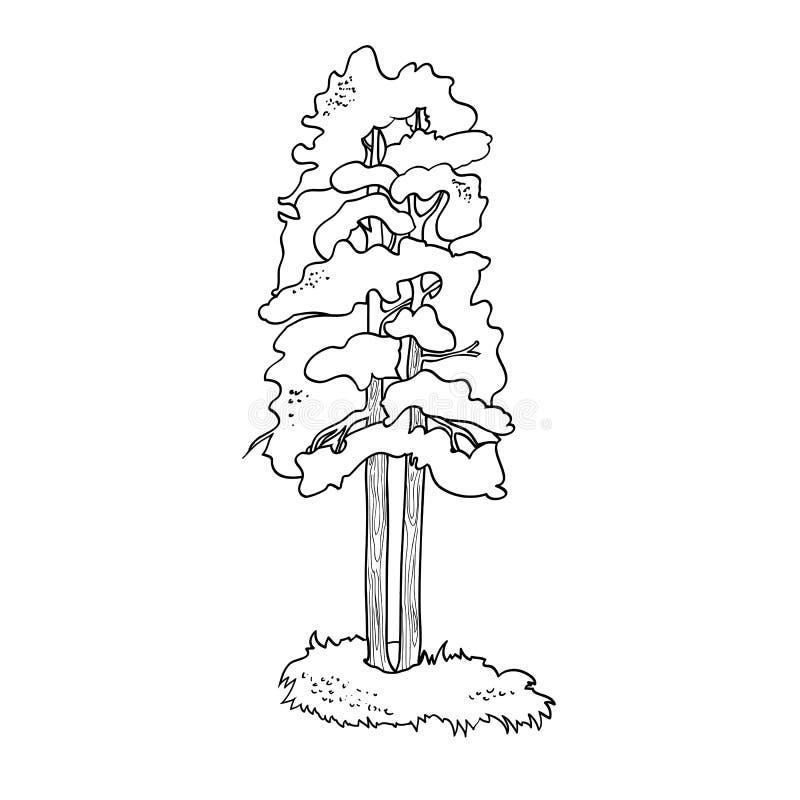 Ilustracja, drzewo ilustracja wektor