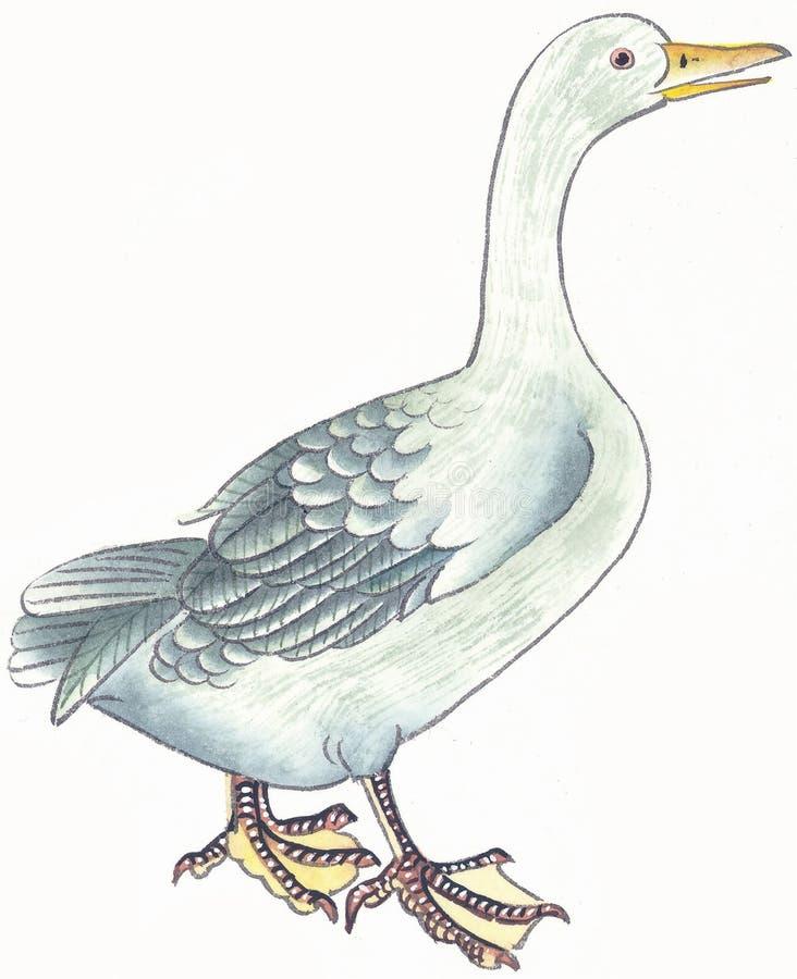 Ilustracja i obraz ilustracji