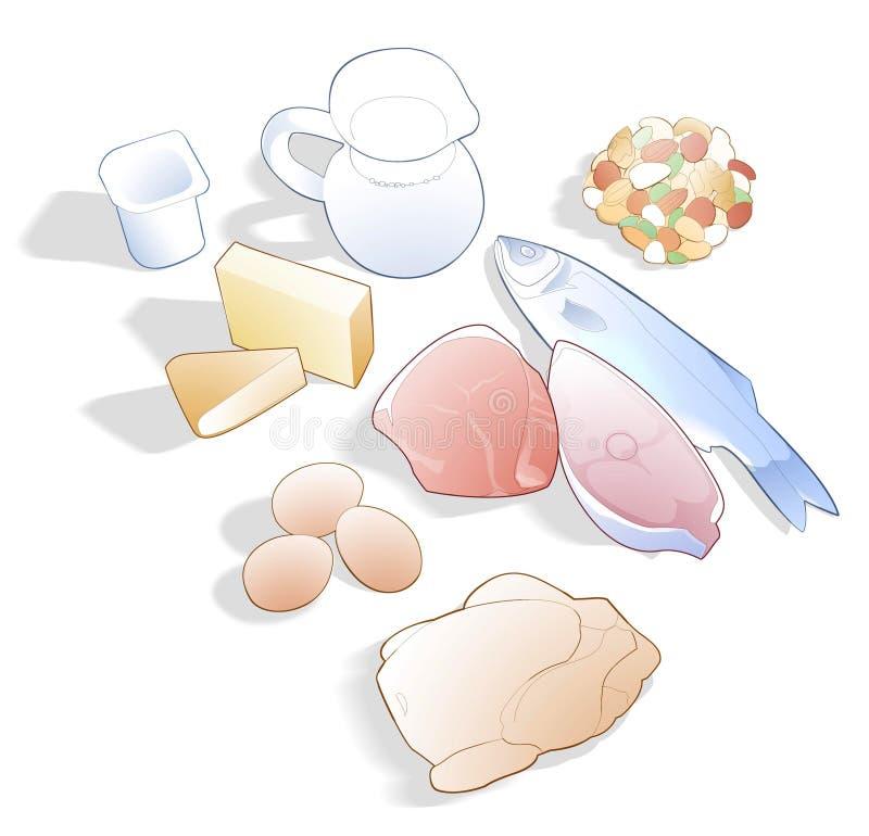 Ilustracja jedzenie linia z proteinami ilustracja wektor
