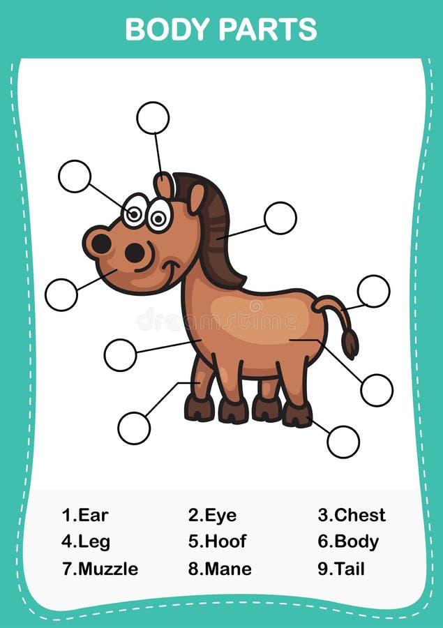 Ilustracja końska słownictwo część ciało royalty ilustracja