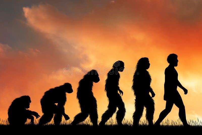 Ilustracja ludzka ewolucja ilustracja wektor