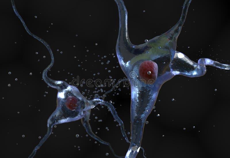 Ilustracja ludzka nerw komórki 3d ilustracja ilustracja wektor