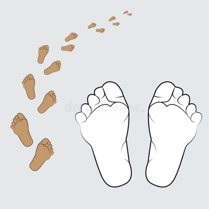 ilustracja ludzka stopa na białym tle ilustracji