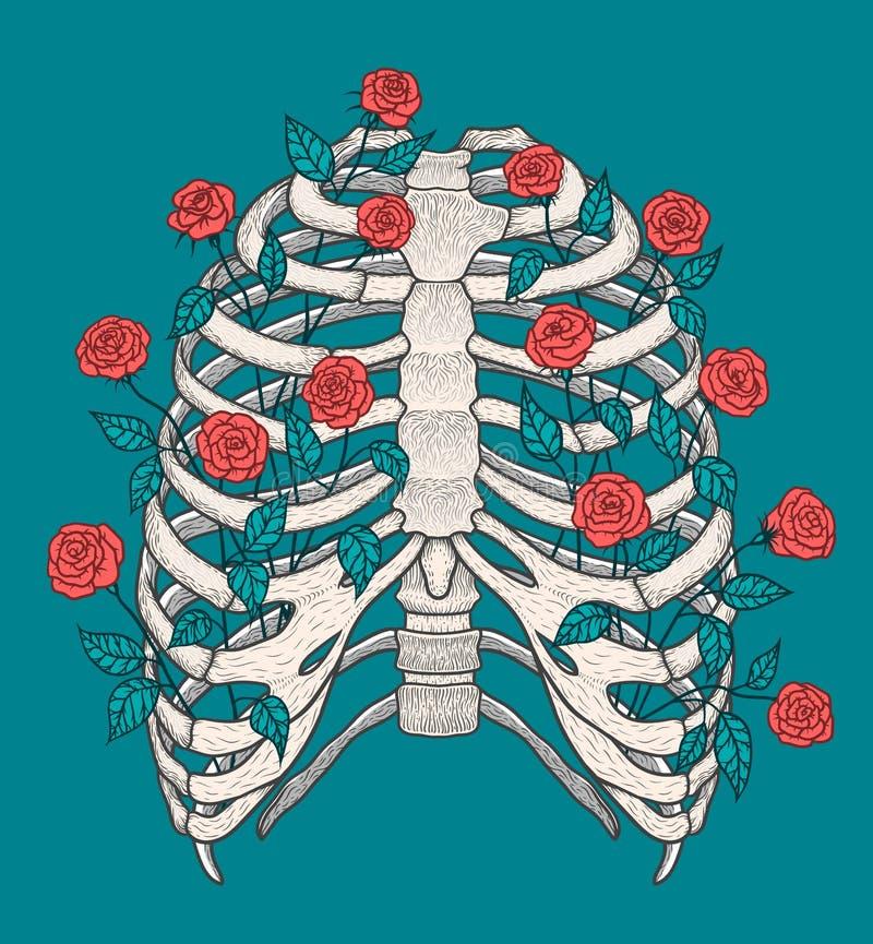 Ilustracja ludzka ziobro klatka z różami Kreskowej sztuki styl Boho wektor ilustracja wektor