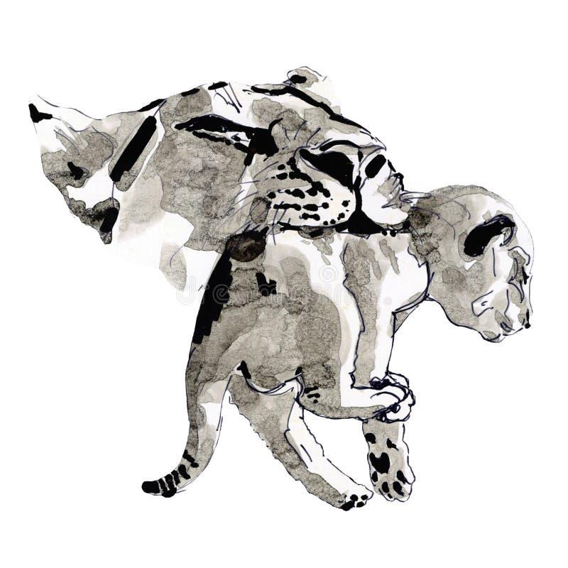 Ilustracja lwy z atramentem ilustracja wektor