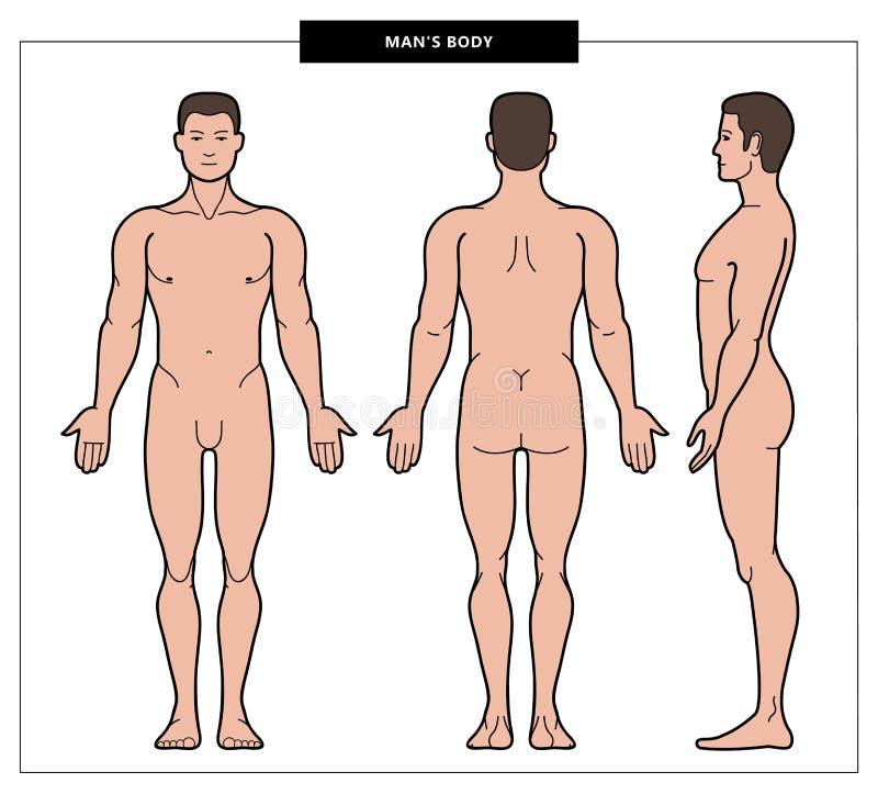 Ilustracja mężczyzny ciało obraz stock