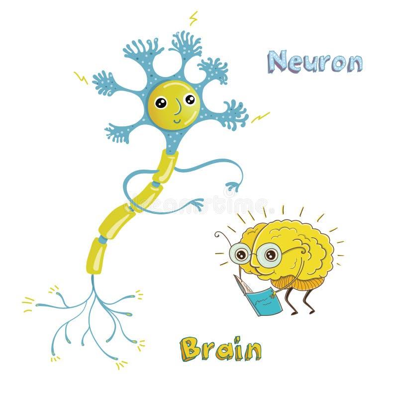 Ilustracja neuron i mózg royalty ilustracja