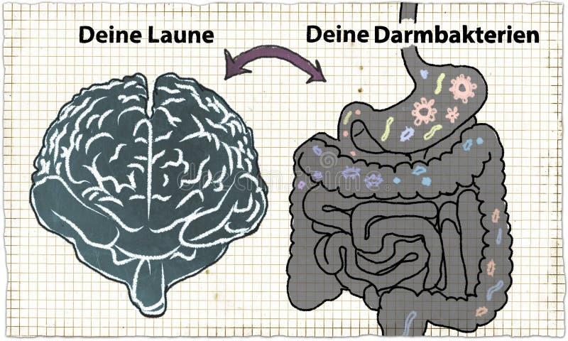 Ilustracja o Probiotics w klasyka stylu ilustracja wektor