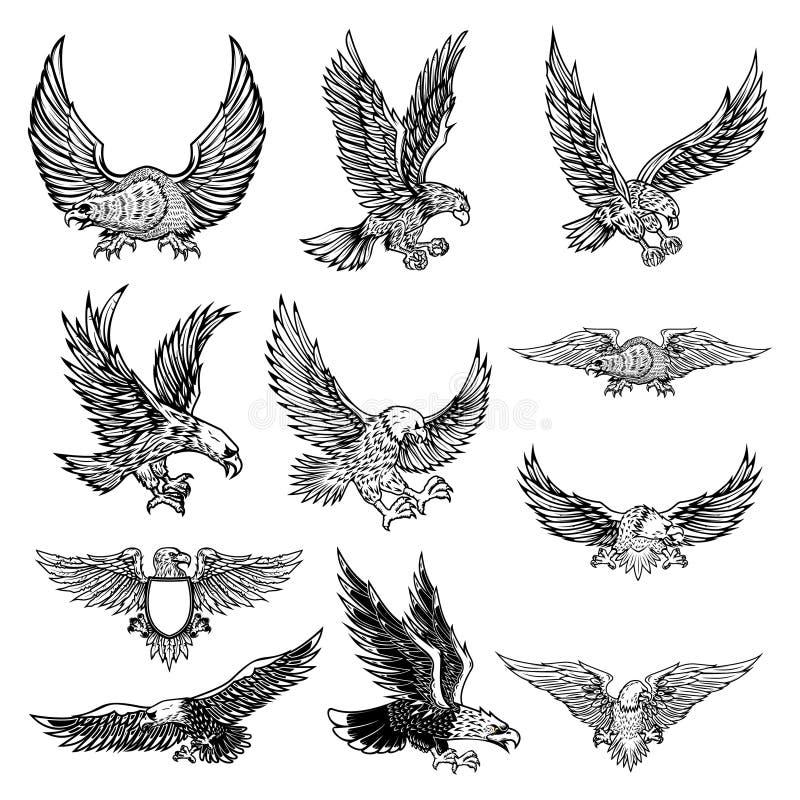 Ilustracja odizolowywająca na białym tle latający orzeł ilustracja wektor