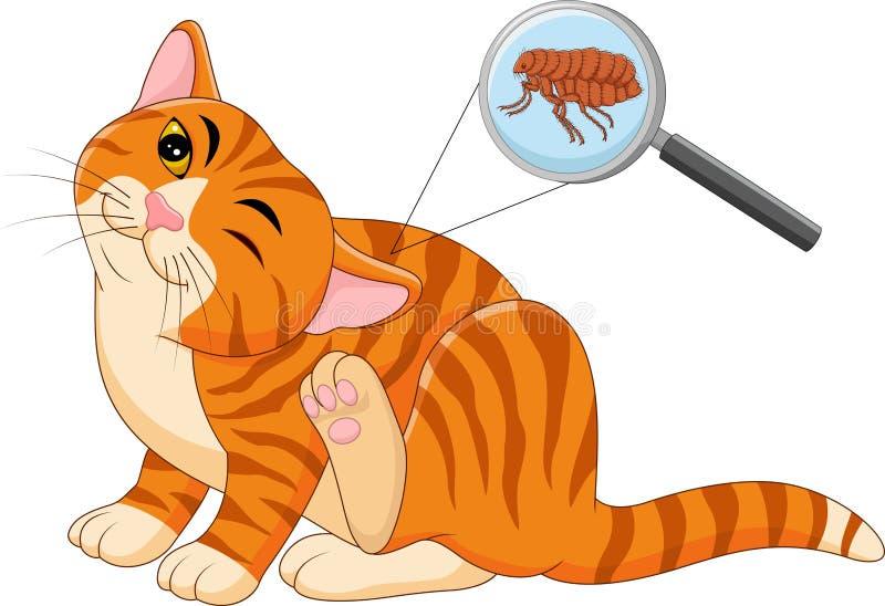 Ilustracja pchła Zarobaczony kot ilustracji