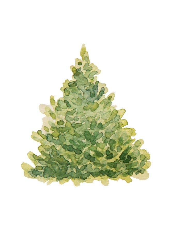 Ilustracja piękna zielona choinka malował z wa ilustracja wektor