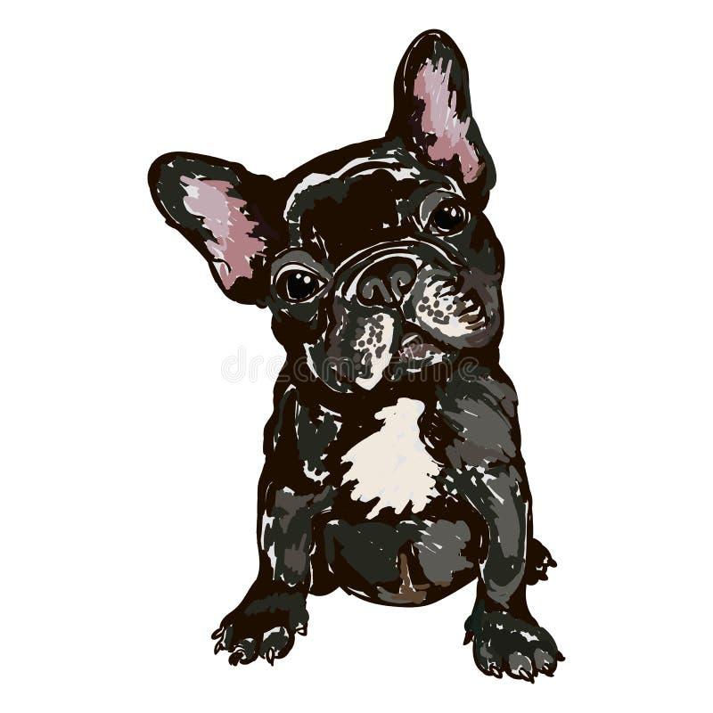 Ilustracja psiego trakenu Francuski buldog ilustracji