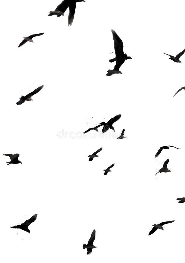 Ilustracja ptaki lata z sztuk muÅ›niÄ™ciami ilustracja wektor