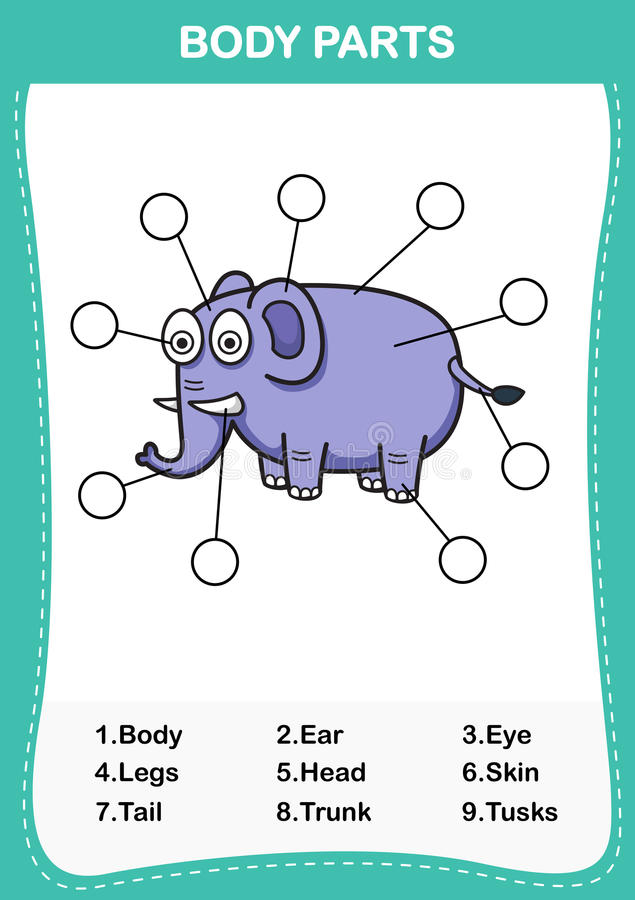 Ilustracja słonia słownictwa część ciało ilustracji