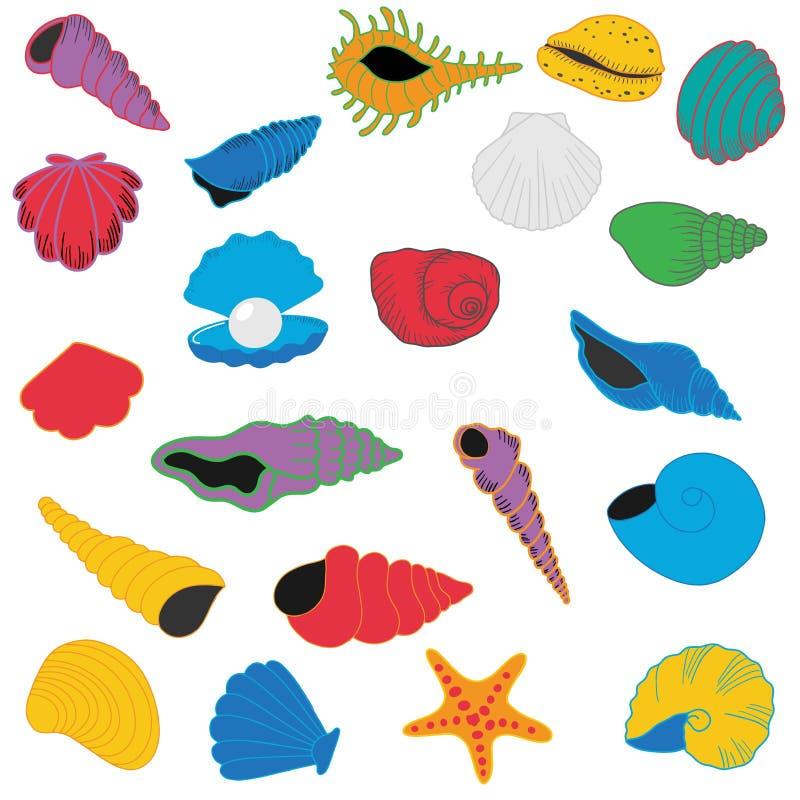 Ilustracja seashells ilustracji