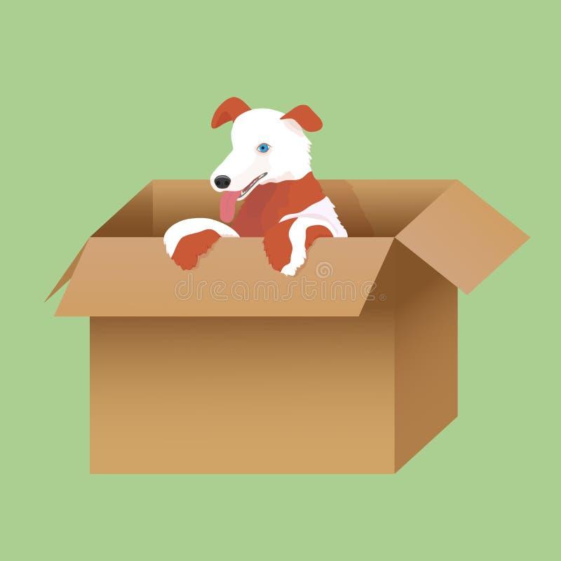Download Ilustracja Szczeniak W Pudełku Ilustracji - Ilustracja złożonej z śliczny, pudełko: 42525521