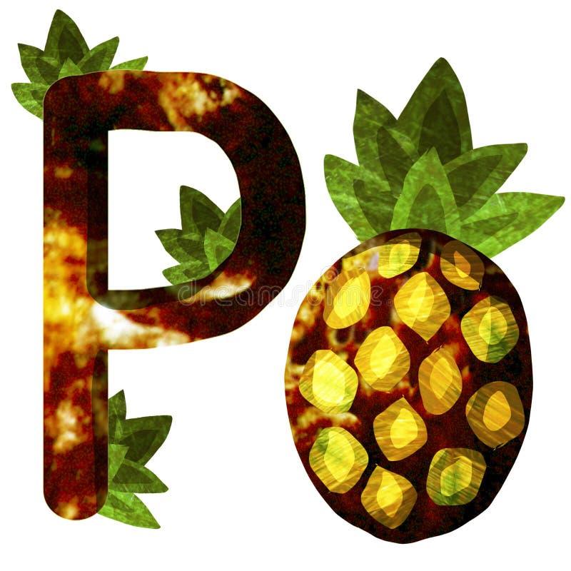 Ilustracja z ananasem zdjęcia royalty free