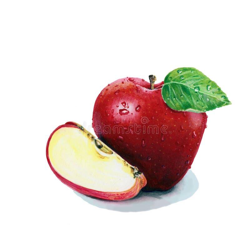Ilustracja z czerwonym jabłkiem zdjęcia royalty free