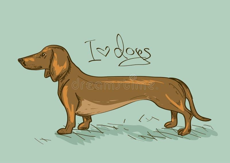 Ilustracja z jamnika psem royalty ilustracja