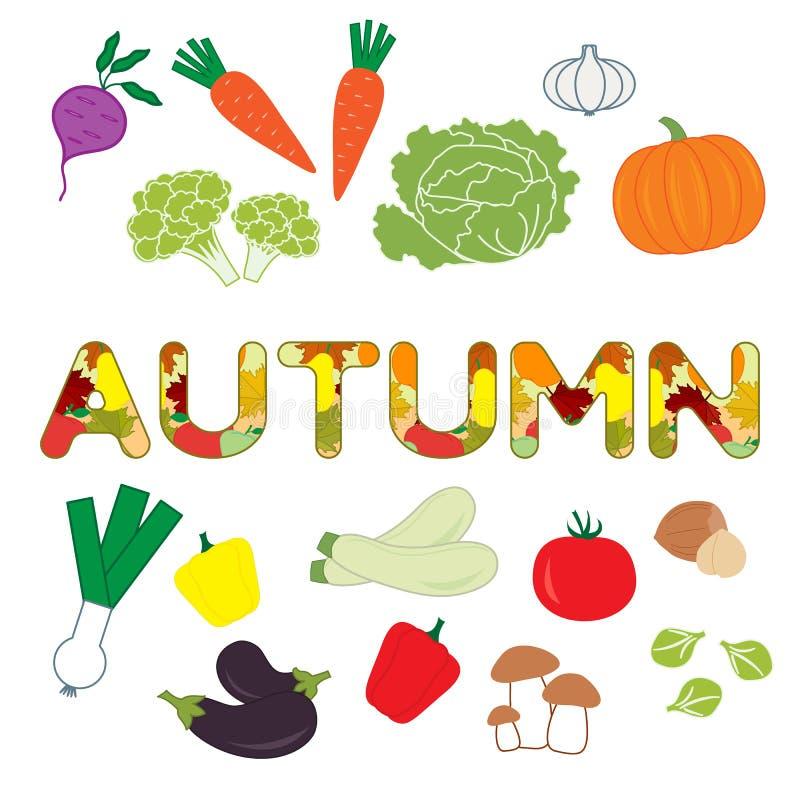 Ilustracja z jesieni warzywami ilustracja wektor