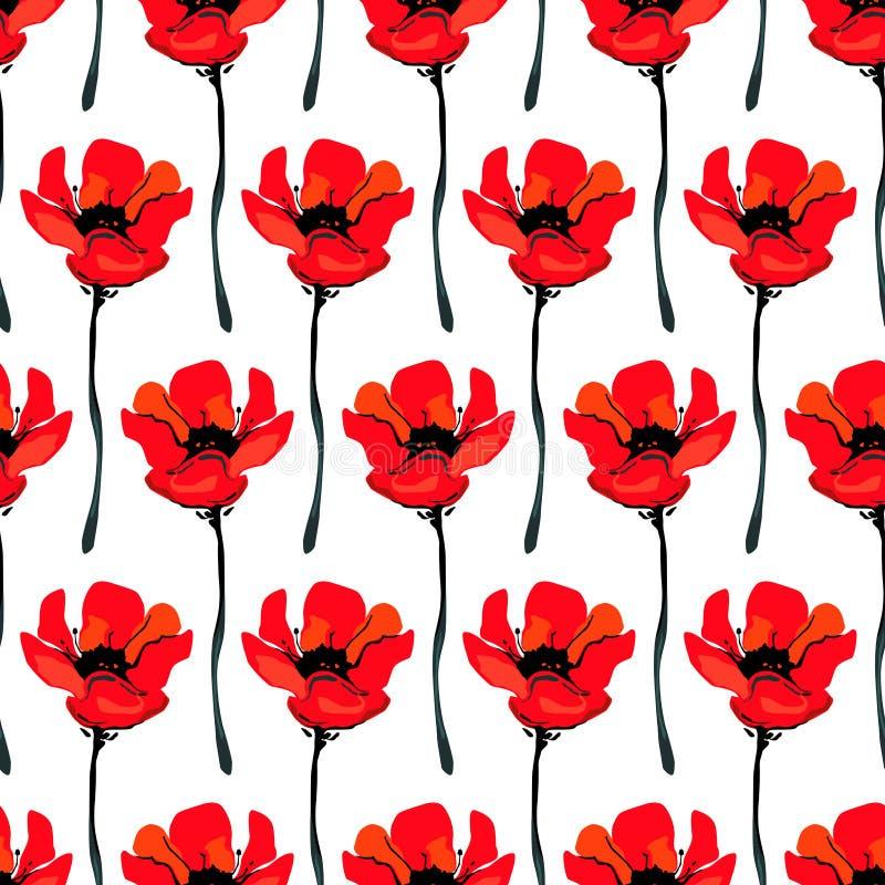 Ilustracja z maczków kwiatami odizolowywającymi na białym tle Lata tło fotografia royalty free