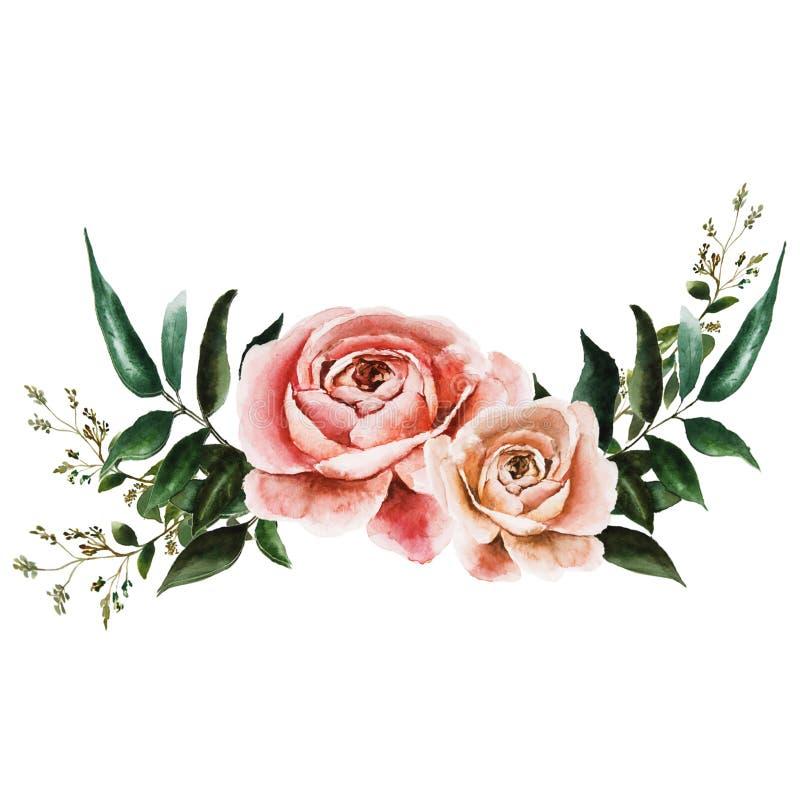 Ilustracja z różami ilustracja wektor