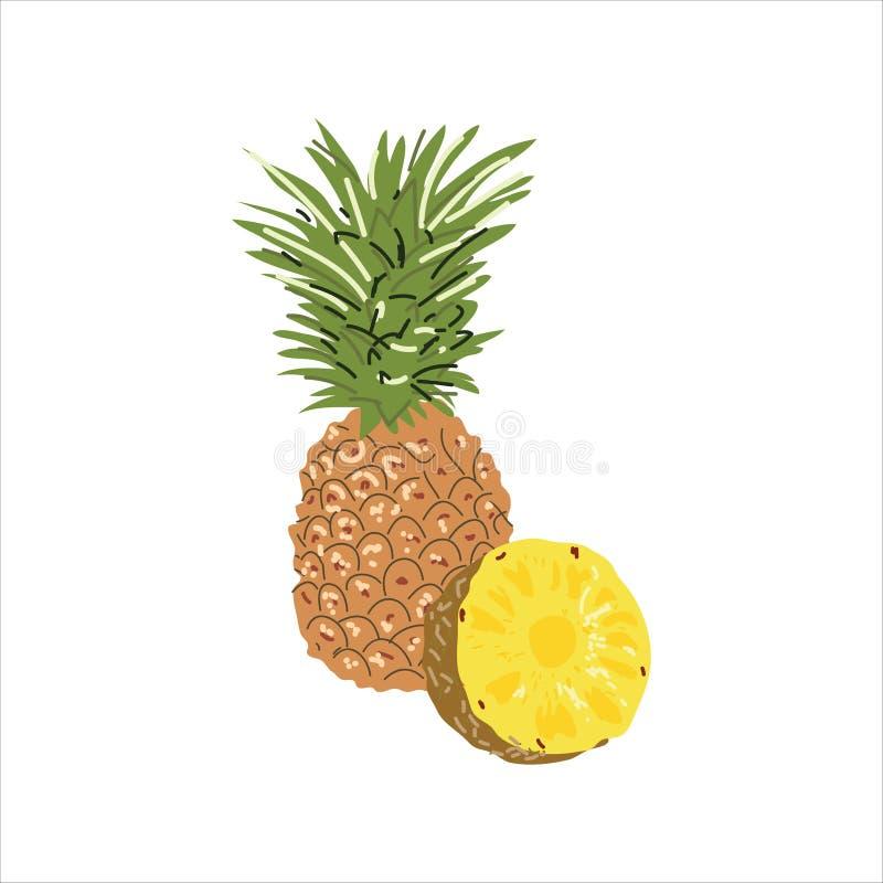 Ilustracja z wizerunkiem ananas i ananas w cięciu Jaskrawa owocowa ikona dla tw?j projekta lub logo ilustracja wektor