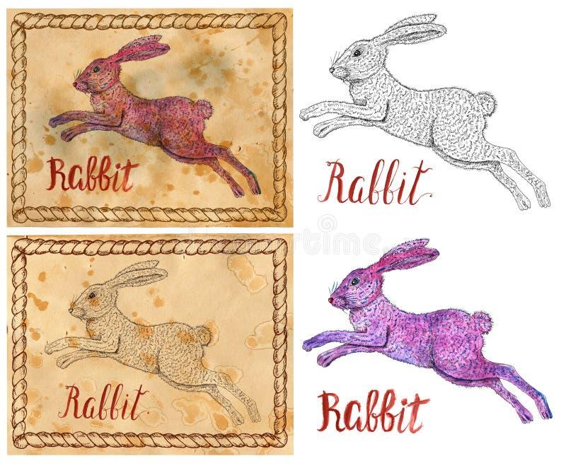 Ilustracja z zodiaka zwierzęciem - królik ilustracji