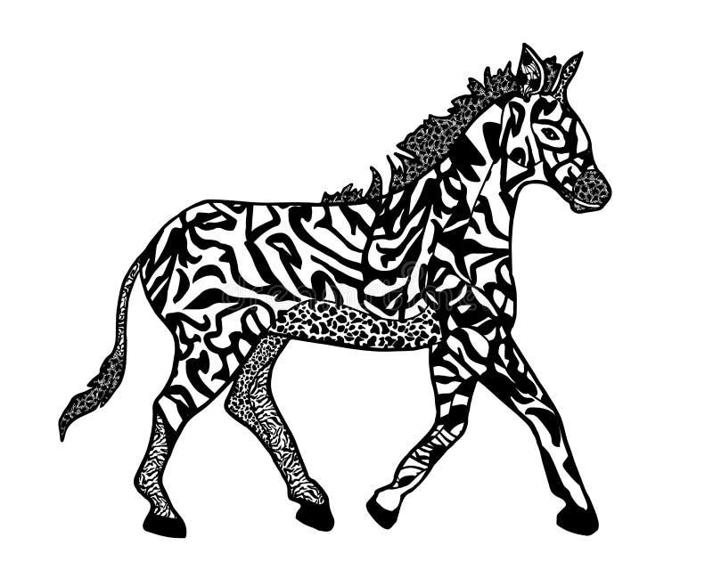 Ilustracja zebra w stylowym zenart odizolowywa na bielu dla kolorystyki książki ilustracja wektor